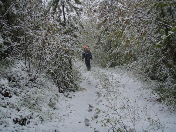 2012-june-06-high-rim-trail-clearing-02-620x465